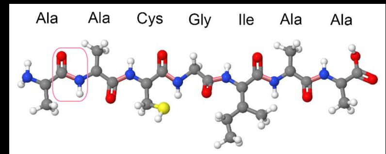 aminozuren en afvallen